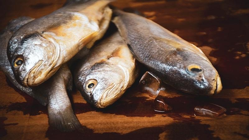 los mejores Consejos Para Escoger un Buen Pescado